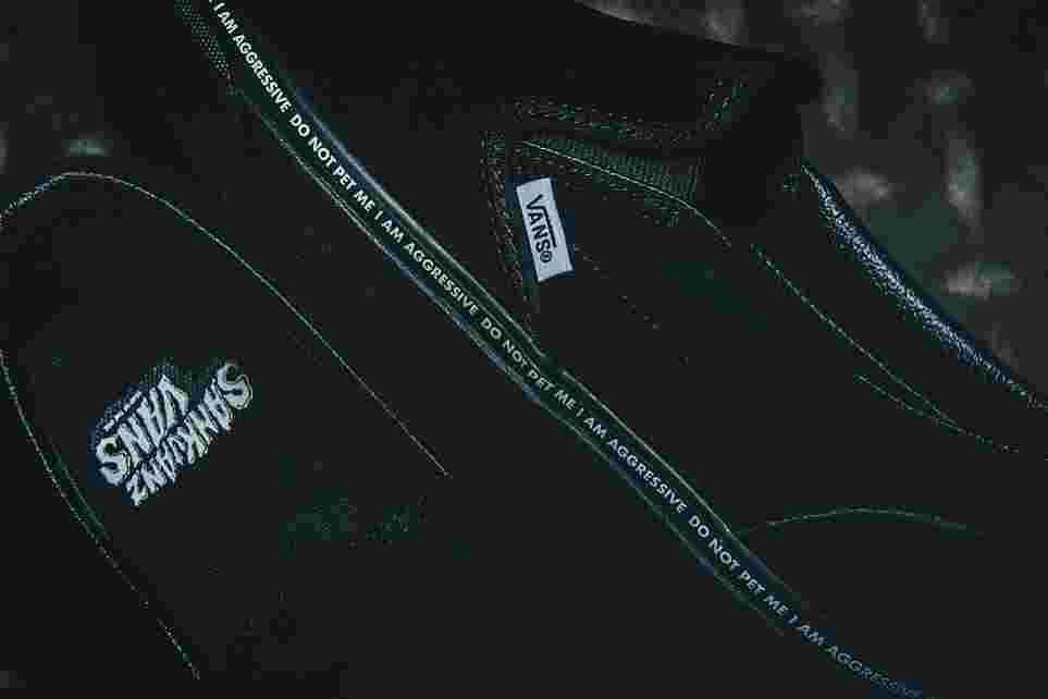 15675a6e21f7c4 SANKUANZ x Vans